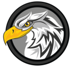 Eagle Vision Systems Icon